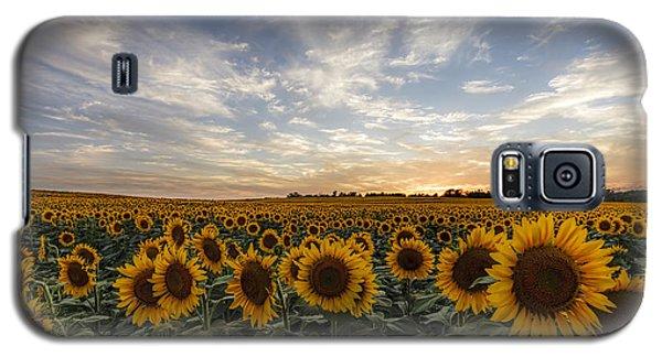 Field Of Gold Galaxy S5 Case