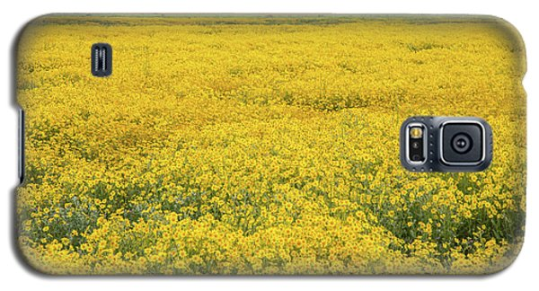 Galaxy S5 Case featuring the photograph Field Of Goldfields by Marc Crumpler