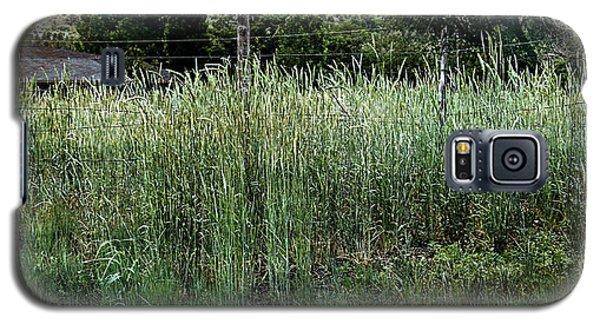 Field Of Grass Galaxy S5 Case