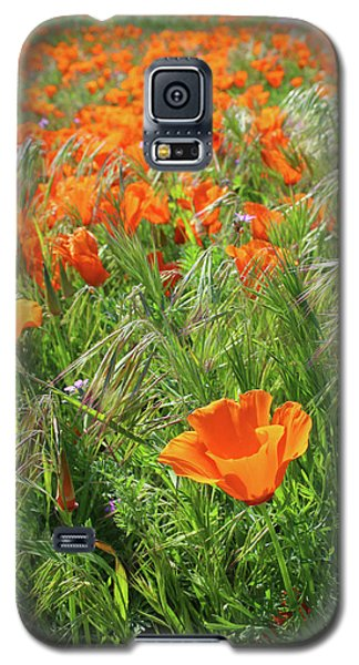 Galaxy S5 Case featuring the mixed media Field Of Orange Poppies- Art By Linda Woods by Linda Woods