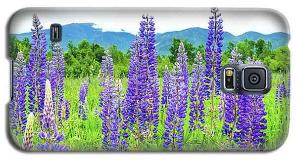 Galaxy S5 Case featuring the photograph Field Of Purple by Greg Fortier