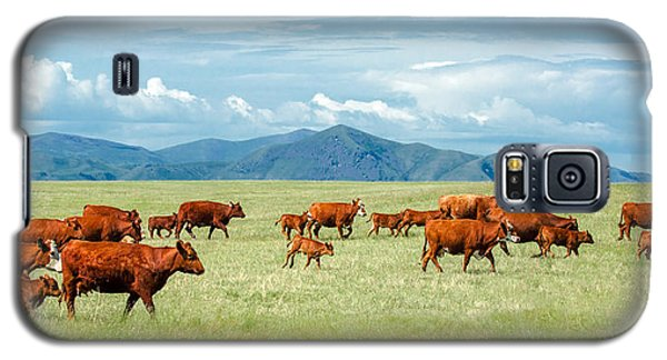 Field Of Reds Galaxy S5 Case