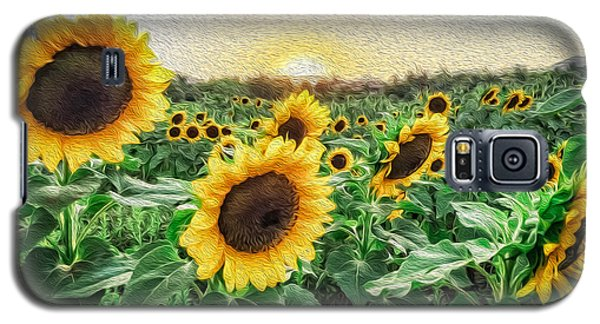 Field Of Sun Galaxy S5 Case