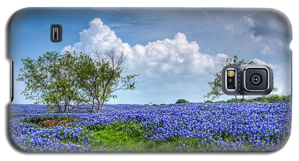 Field Of Texas Bluebonnets Galaxy S5 Case