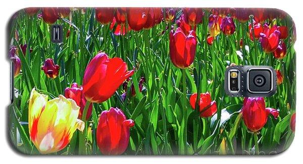Tulip Garden Galaxy S5 Case