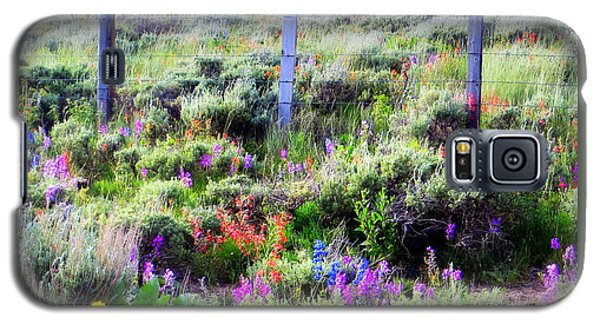 Field Of Wildflowers Galaxy S5 Case