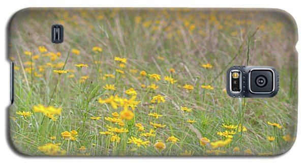 Field Of Yellow Flowers In A Sunny Spring Day Galaxy S5 Case
