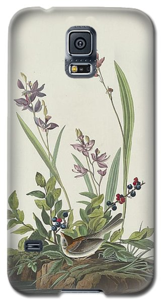 Field Sparrow Galaxy S5 Case by Dreyer Wildlife Print Collections