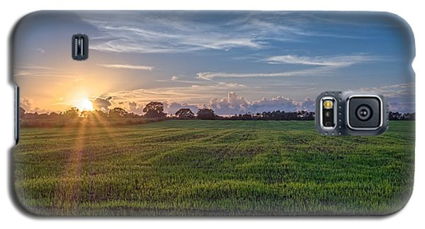 Field Sunset Galaxy S5 Case