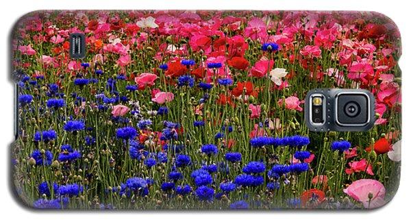 Fields Of Flowers Galaxy S5 Case
