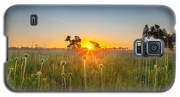 Fields Of Gold Galaxy S5 Case by Az Jackson