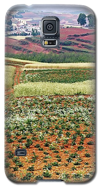 Fields Of The Redlands - 2 Galaxy S5 Case
