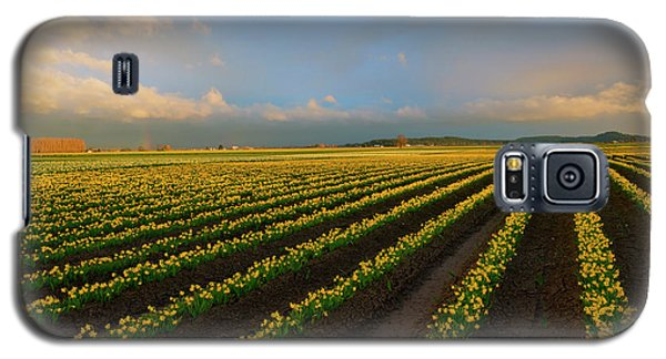 Galaxy S5 Case featuring the photograph Fields Of Yellow by Mike Dawson