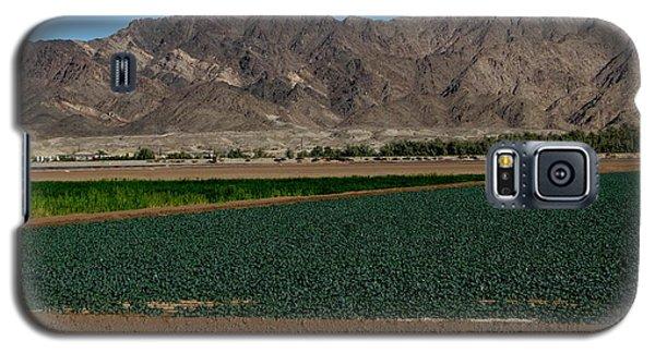 Fields Of Yuma Galaxy S5 Case by Greg Patzer