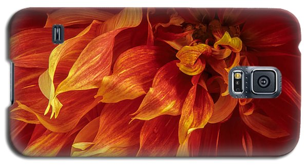 Fiery Dahlia Galaxy S5 Case