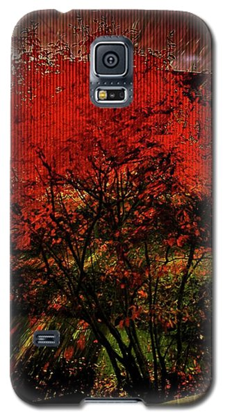 Galaxy S5 Case featuring the photograph Fiery Dance by Mimulux patricia no No