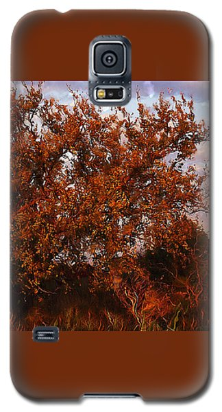 Fiery Elm Tree  Galaxy S5 Case