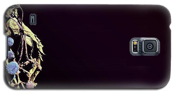 fig Galaxy S5 Case