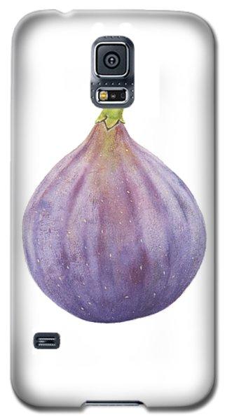 Fig Watercolor Galaxy S5 Case by Taylan Apukovska