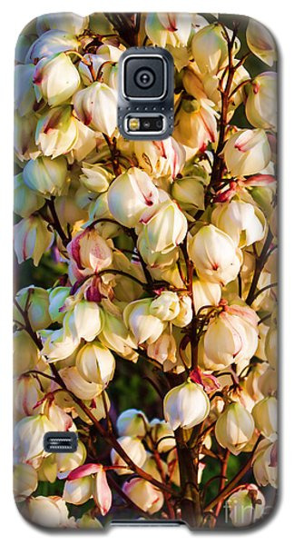 Filled With Joy Floral Bunch Galaxy S5 Case