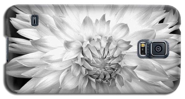 Filter Series 101 Galaxy S5 Case