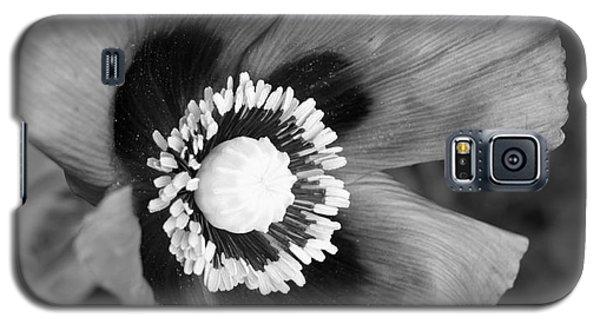 Filter Series 102 Galaxy S5 Case