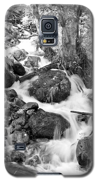 Filter Series 103 Galaxy S5 Case
