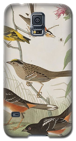 Bunting Galaxy S5 Case - Finches by John James Audubon