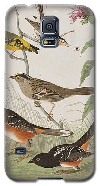 Finches Galaxy S5 Case by John James Audubon