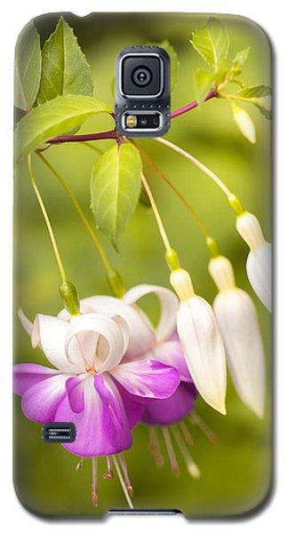 Finding Fuchsia Galaxy S5 Case