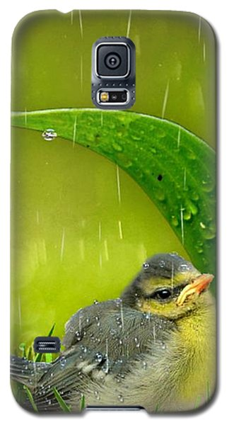 Finding Shelter Galaxy S5 Case