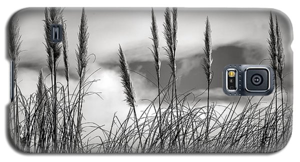 Fine Art Black And White-188 Galaxy S5 Case