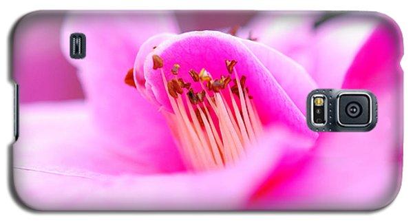 Fine Art- Pink Camellia Galaxy S5 Case