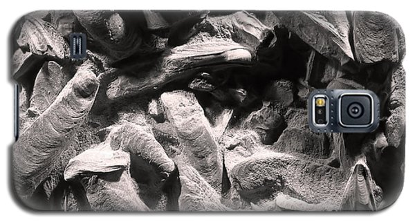 Galaxy S5 Case featuring the photograph Fingers Of Time - Giant Oyster Shell Fossils by Menega Sabidussi