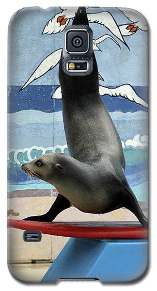 Fins Up Galaxy S5 Case