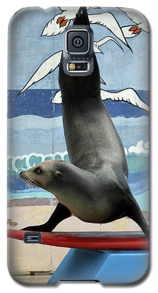 Fins Up Galaxy S5 Case