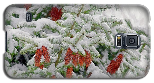 Galaxy S5 Case featuring the photograph Fir Cones On White Photo Art by Sharon Talson