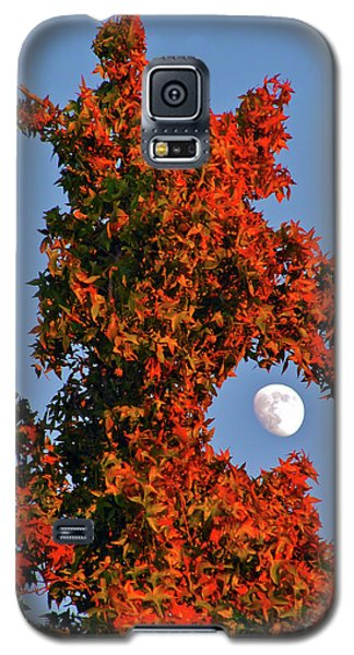 Fire Dragon Tree Eats Moon Galaxy S5 Case by CML Brown