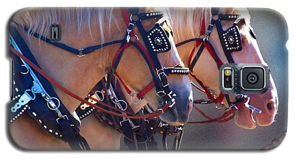 Fire Horses Galaxy S5 Case