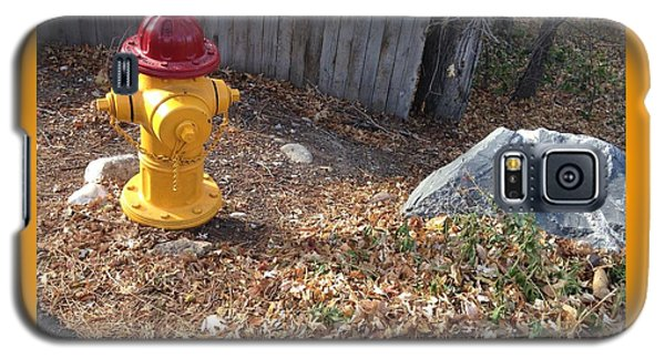 Galaxy S5 Case featuring the photograph Fire Hydrant Checking Its Facerock by Richard W Linford