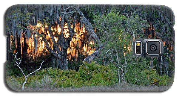 Fire Light Jekyll Island Galaxy S5 Case