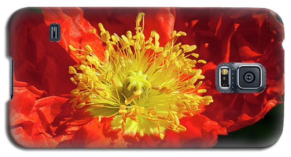 Firery Flower Galaxy S5 Case