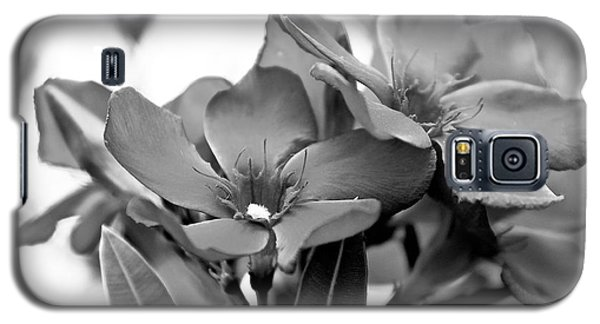 Galaxy S5 Case featuring the photograph Firewalker Sw by Wilhelm Hufnagl