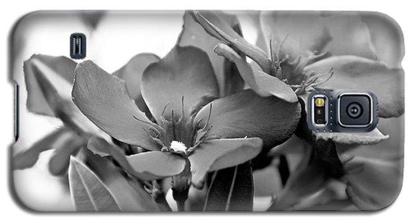 Firewalker Sw Galaxy S5 Case