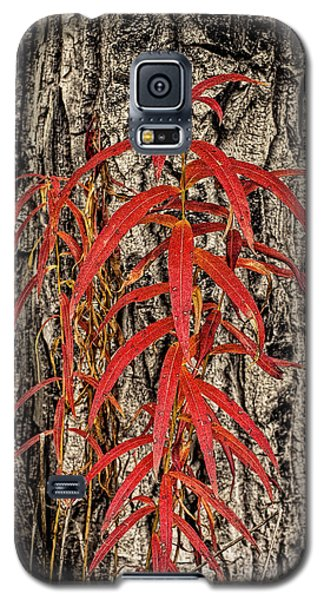Fireweed 2015 Galaxy S5 Case