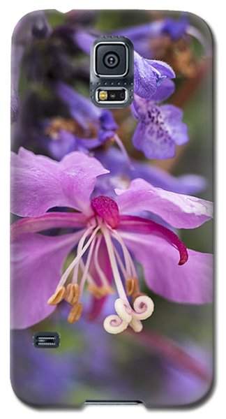 Fireweed Galaxy S5 Case