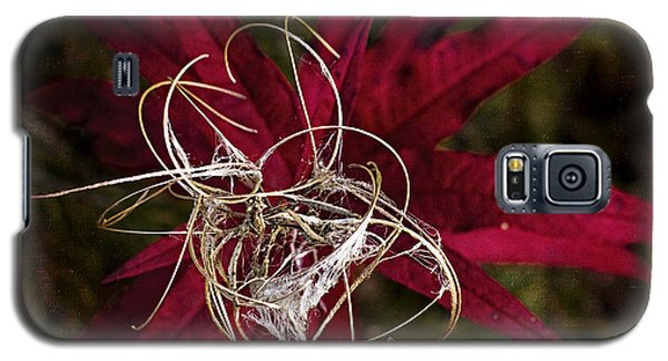 Fireweed Seed Galaxy S5 Case