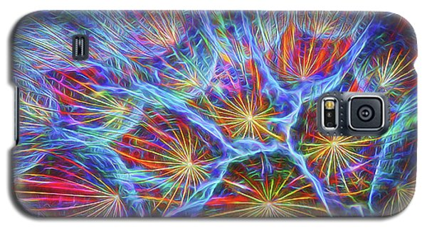 Fireworks In Nature Galaxy S5 Case