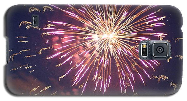 Fireworks In The Park 2 Galaxy S5 Case