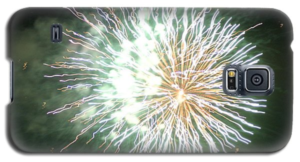 Fireworks In The Park 4 Galaxy S5 Case